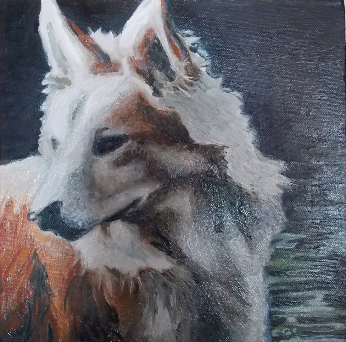 The latest dog portrait for a lovely lady who loves her dog.