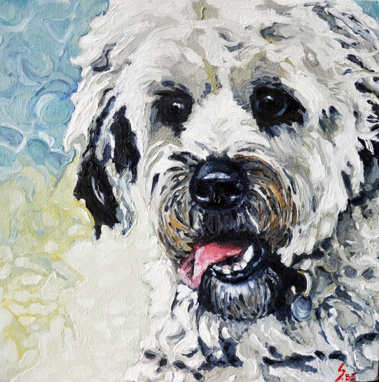 A latest portrait of a very cute dog.